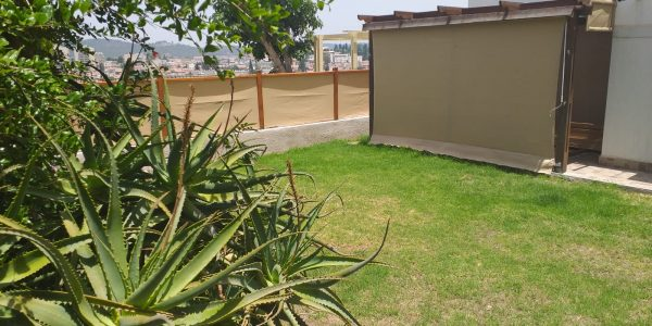 Garden | Apartment on Shivtei Yisrael, Sheinfeld - Beit Shemesh