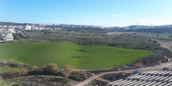 View | Penthouse on Rabbi Yannai - Nofei HaShemesh, Beit Shemesh