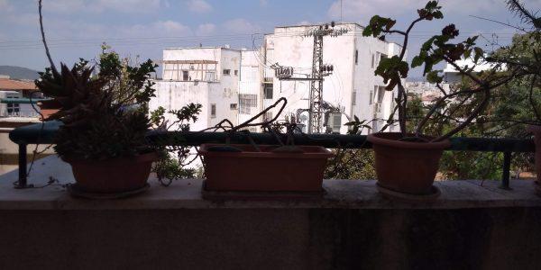 View | Apartment on Bar Ilan St - Sheinfeld, Beit Shemesh